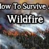 BIG-Wildfire-ee03a3838a6286b166ca7ace0755243adb1891a2