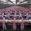 slave-work1-694bbcd83894514001cea2fd4c3282dee3fe0c0a