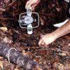 setting-up-a-steel-trap-f-1fad4a4653311b16abe9381fb4cae867ad012fe2
