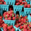 strawberries-1584443_640-45eec9ac36323172beac0210b7673afe9c32784b