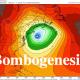 bombogenesis-400b57f72ca887ea435f48daf3935b14c0839897